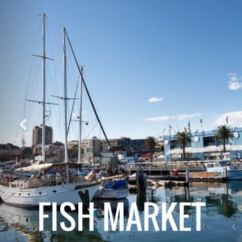 Sydney Harbour Boat Tours | Manly Fish Market